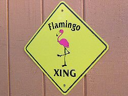 Flamingo Crossing